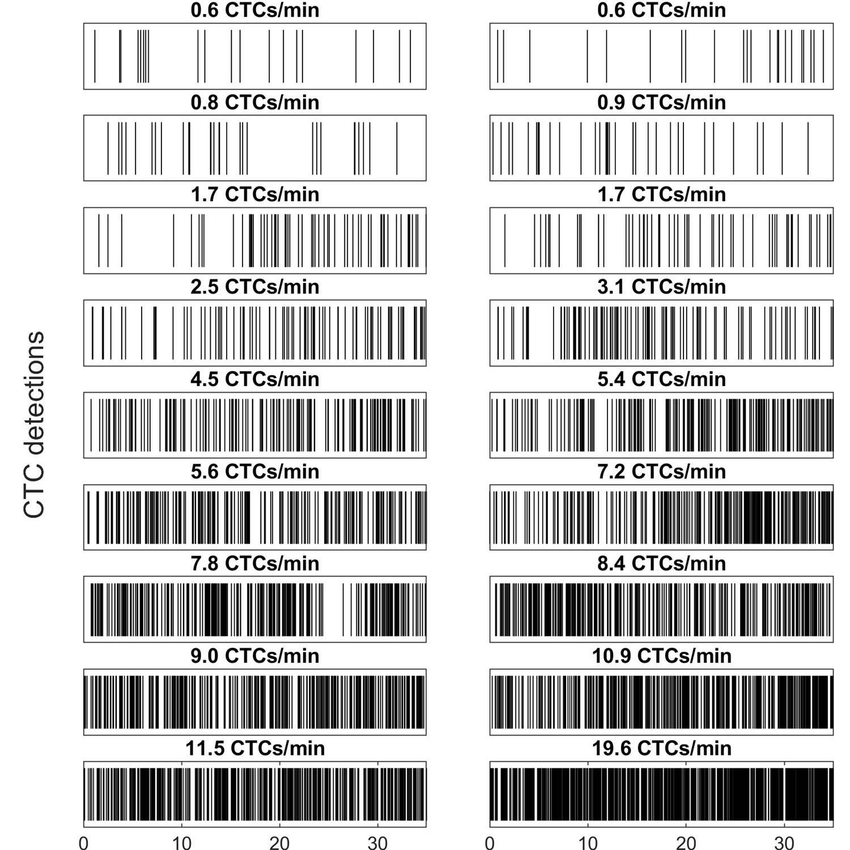 Dataset Banner Image